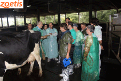 Gumersindo de la Riera, del Centro Técnico Veterinario La Espina-Salas S.L. (en el centro de la imagen) durante las prácticas en granja.