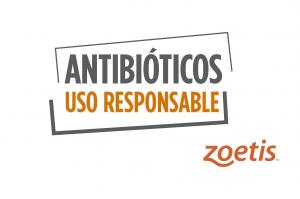Antibióticos uso responsable