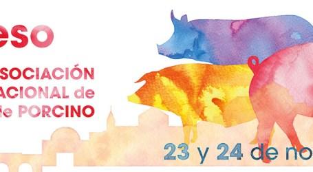 Presentación de la Web del V Congreso ANAVEPOR