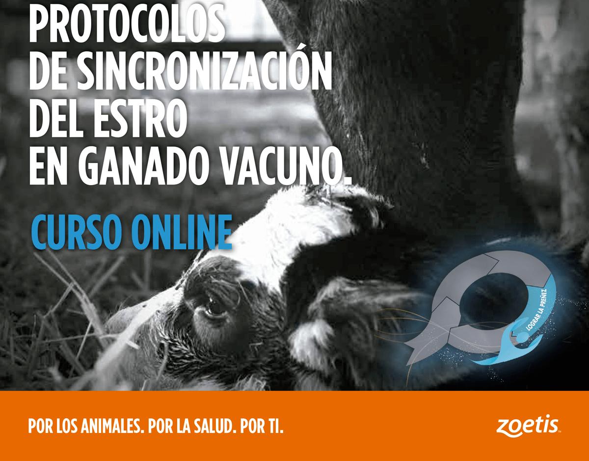 Curso_repro_vacuno