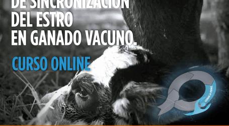 Zoetis ofrece formación en protocolos reproductivos  al profesional del sector vacuno