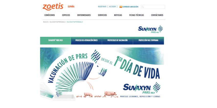 Ya-es-posible-consultar-todas-las-ventajas-de-Suvaxyn®-PRRS-MLV-en--el-nuevo-portal-web-zoetis-es-suvaxynprrsmlv