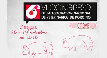 VI Congreso ANAVEPOR