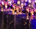 Cien granjas de porcino de siete comunidades autónomas se disputan los premios Porc d'Or 2018