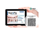 El porcino nacional recibe con gran interés la nueva revista digital ReproPig