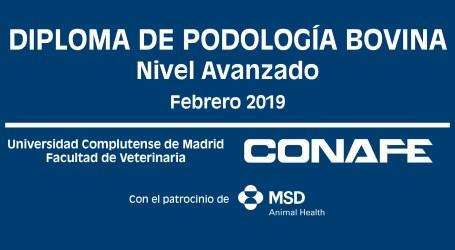 MSD Animal Health patrocina la I edición del Diploma en Podología Bovina de Conafe y la UCM