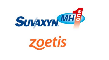 Zoetis vacuna a más de 12 millones de cerdos frente a la neumonía enzoótica