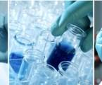 Nace la Red de Investigación de Sanidad Animal (RISA)