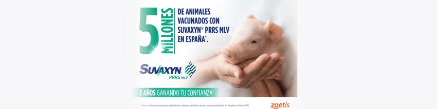 Suvaxyn®-PRRS-MLV--dos-años-de-confianza-y--cinco-millones-de-animales-vacunados