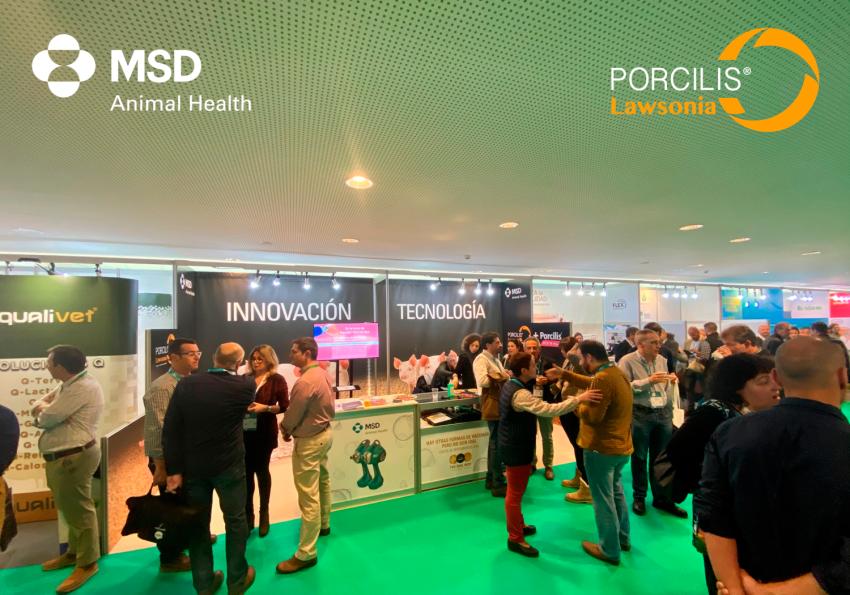 MSD-Animal-Health-da-a-conocer-los-beneficios-de-Porcilis®Lawsonia-en-Porciforum-2020