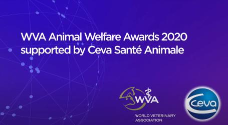 Los Premios de Bienestar Animal 2020 de la WVA patrocinados por Ceva Salud Animal ya tienen ganadores