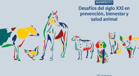 """Boehringer Ingelheim Animal Health presenta """"Manifiesto: desafíos del siglo XXI en prevención, bienestar y salud animal"""""""