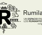 Ester Molina y Beatriz Serrano-Pérez abordan las adipoquinas en el bovino en un nuevo episodio de Rumiland