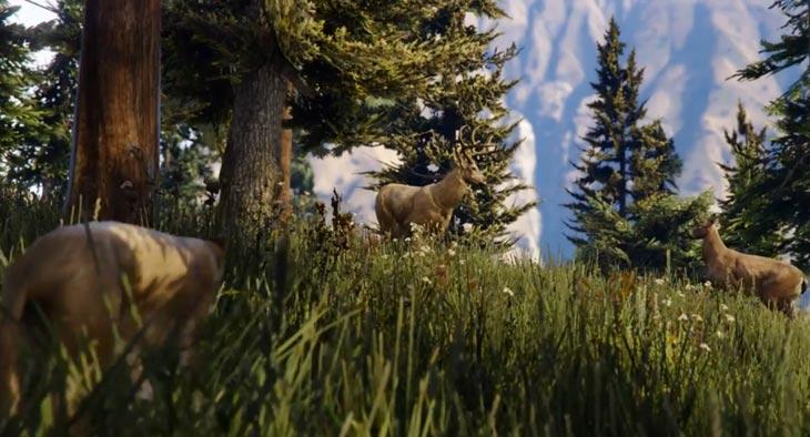 New GTA V Wildlife In PS4 PC XB1 Trailer Product