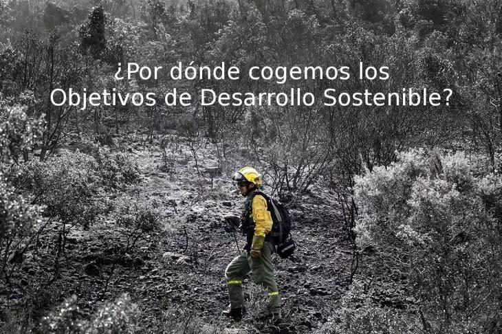 Ecosistemas terrestres y desarrollo sostenible