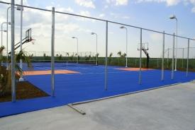 pro dunk hoops