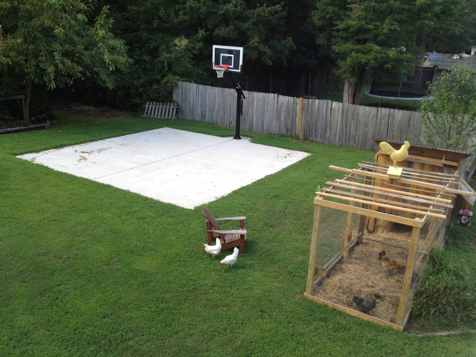 Backyard basketball on a concrete slab. on Concrete Slab Backyard Ideas id=42763