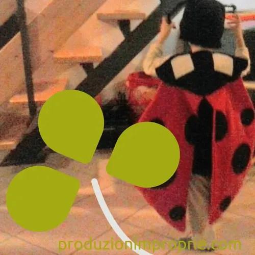 costume carnevale coccinella
