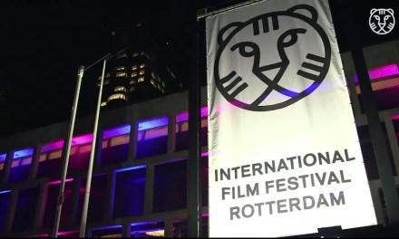 Palmarès du festival de Rotterdam 2016 en vidéos