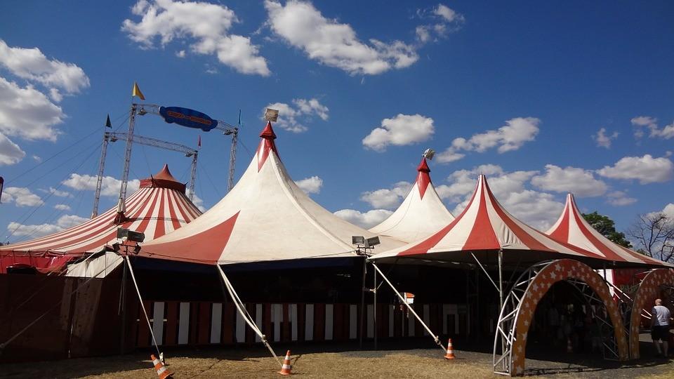Création d'une charte nationale pour l'accueil des cirques et structures culturelles itinérantes
