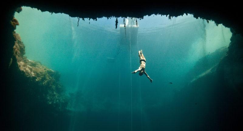 «L'Homme dauphin, sur les traces de Jacques Mayol» : sur les pa(lme)s d'un plongeur dépressif