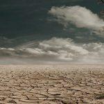 «De terre de honte et de pardon» de David Léon: une réconciliation