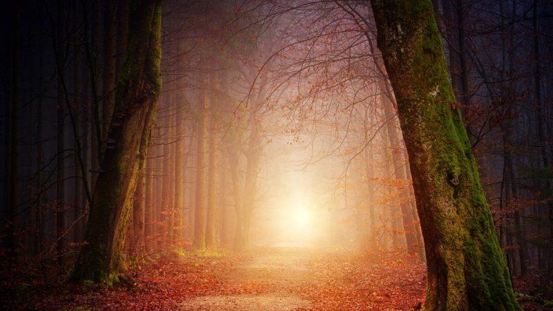 «Approche de l'aube» de Thierry-Pierre Clément : vers une lumière qui ne s'éteint pas