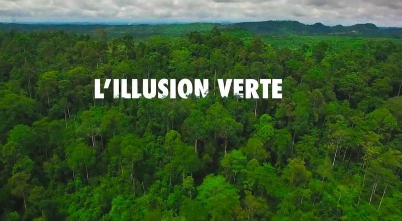 """L'Illusion verte"" : un documentaire partial contre le greewashing"