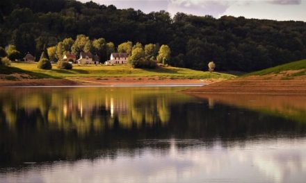 Bourgogne – La Cie Rasposo recherche un chargé d'administration et de production (f/h)