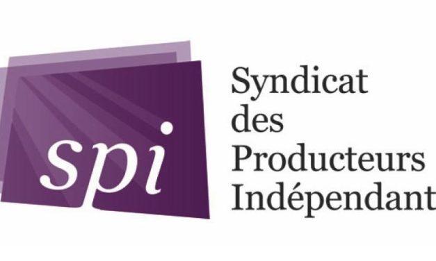 Emmanuelle Mauger nommée déléguée générale adjointe du Syndicat des producteurs indépendants