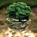Région Sud – 17 festivals engagés pour l'environnement