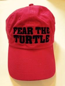 feartheturtle