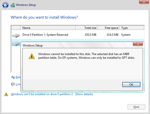 Selected Disk Has an MBR Partition