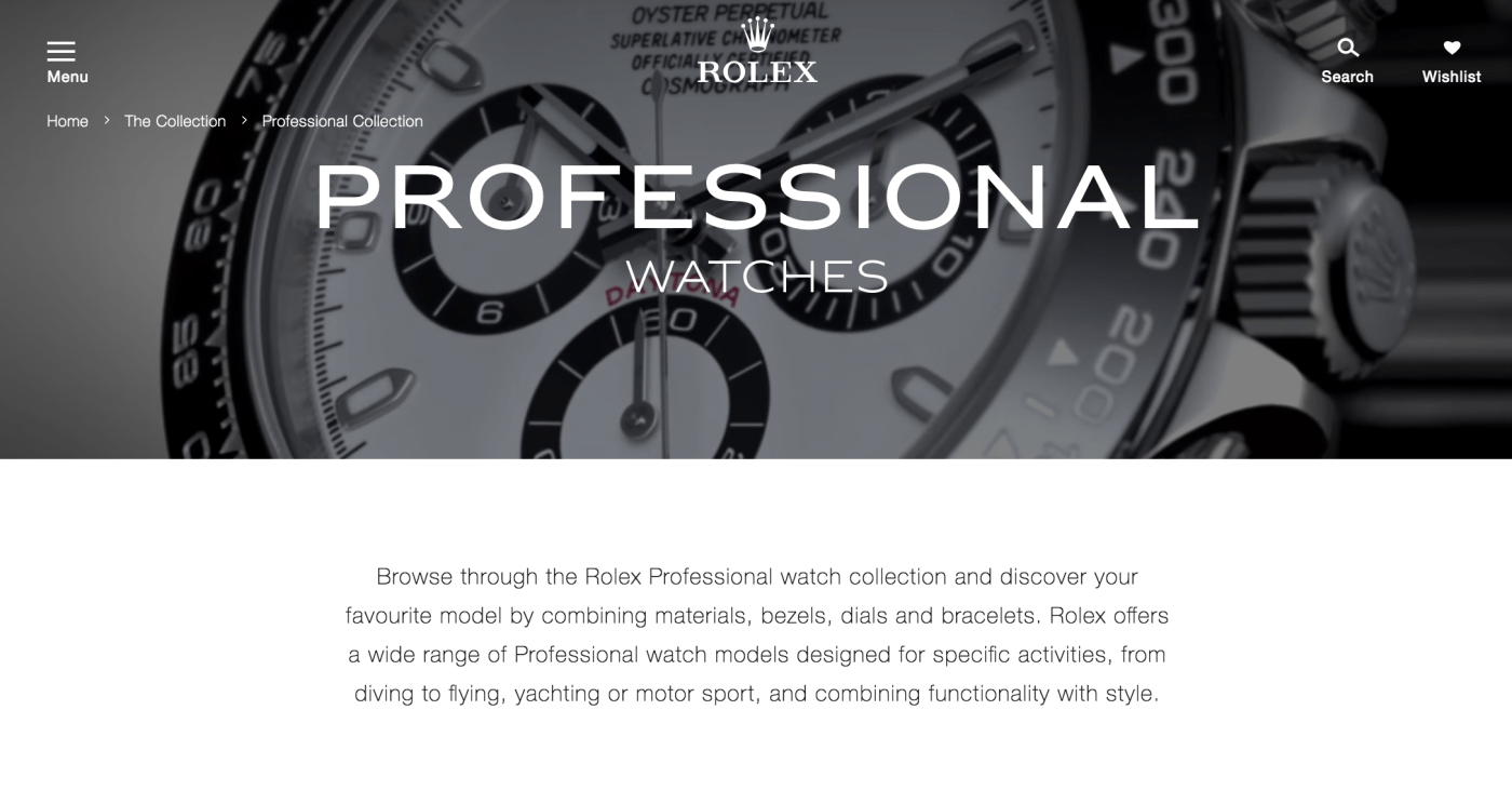 Professional Watches Rolex page screenshot