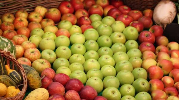 Types of Apples - A Great Source of Vitamin C