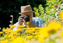 Photo of أفكار للتصوير المنزلي في الربيع: استخدم عدسات زوم للحصول على صور رائعة للزهور في حديقتك