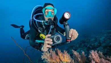 Photo of كاميرا التصوير تحت الماء SeaLife Micro 3.0 للغواصين و الحياة البحرية