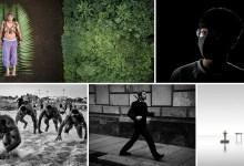 Photo of إليكم الصور الفائزة بجوائز سوني العالمية في التصوير الفوتوغرافي لعام 2020