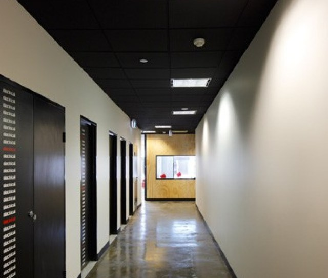 Professional Suspended Ceiling