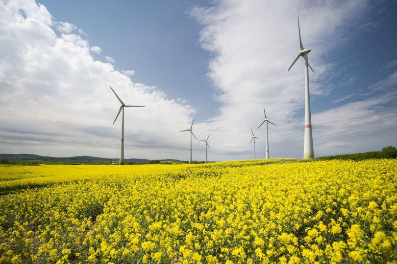 ΣτΕ-ανανεώσιμες