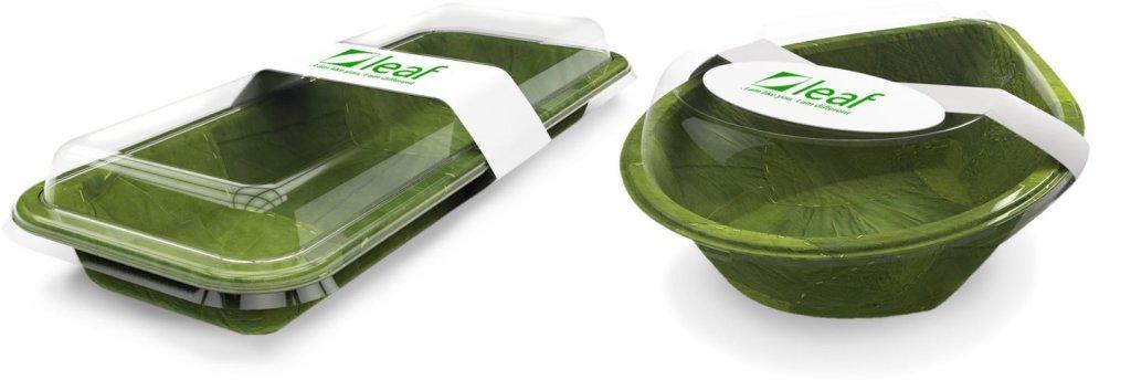 Leaf plates eco-friendly packaging