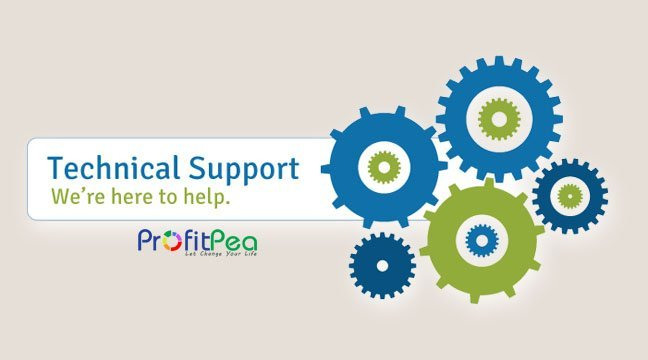 provide IT technical support