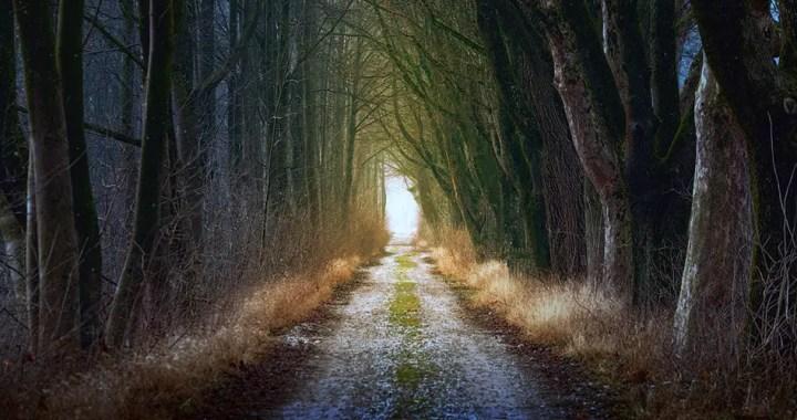 Path-Goal Theory of Leadership Effectiveness
