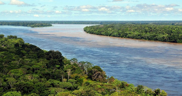 Importance of the Amazon Rainforest