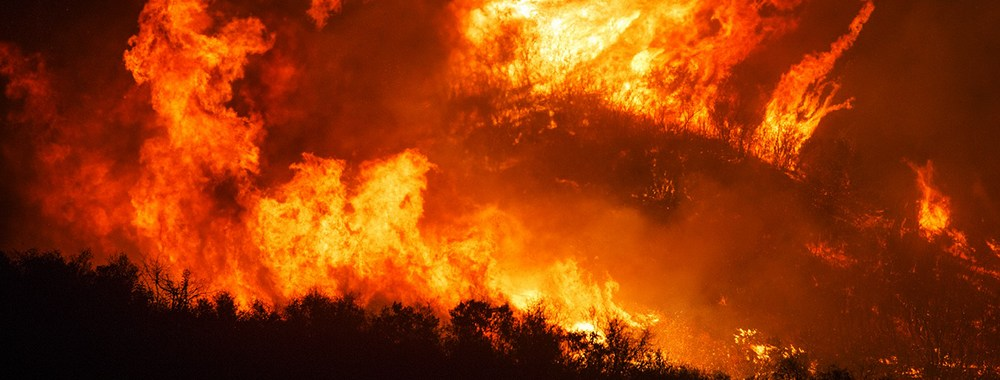 Why Is The Amazon Rainforest Burning?