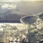 The Possible Effects of Melting Arctic