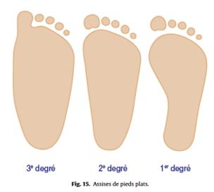 Fig 15 Proformed - formations medicales