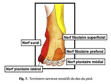 douleur au dessus du pied et gonflement