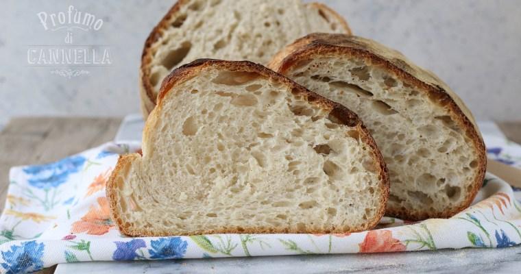 Pane di casa semplice – con pasta madre