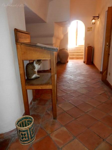 castello aragonese ischia casa del sole museo